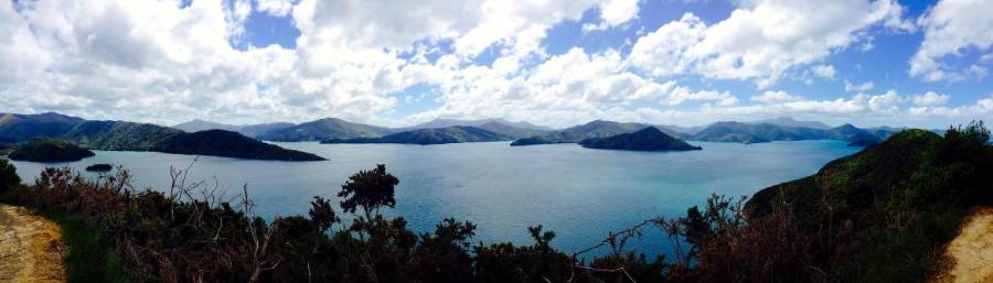 Neuseeland | Südinsel, Marlborough Sounds
