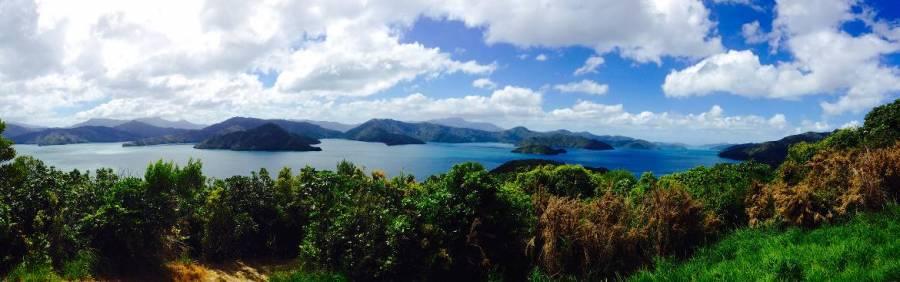 Neuseeland | Südinsel, Panorama des Queen Charlotte Sound auf die Cookstraße bei Picton