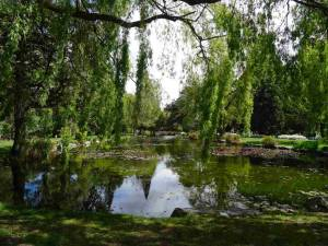 Neuseeland | Südinsel, Queenstown Gardens. Blick auf einen kleinen See inmitten von sattgrünen Bäumen und Wiesen
