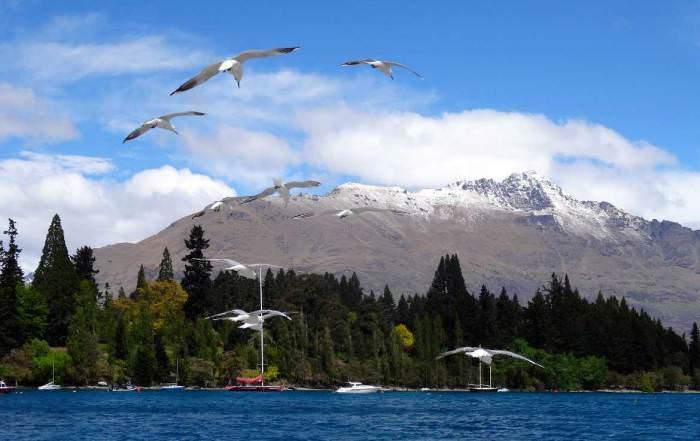 Neuseeland Detail: Beste Reisezeit & Klimatabelle