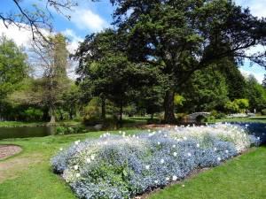Neuseeland | Südinsel, Queenstown Gardens, mit bunten Blumen in einem idyllischen Park