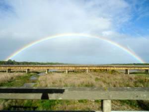 Südinsel, wunderschöne Regenbögen sind keine Seltenheit auf der Südinsel