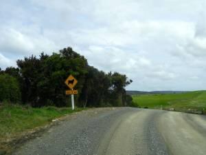 Neuseeland | Südinsel, gelbe Hinweisschild, dass die nexten 3 Kilometer Schafe auf der Fahrbahn sein können