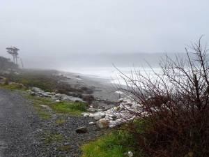 Südinsel, Strand an der Westküste grau in grau im Regen