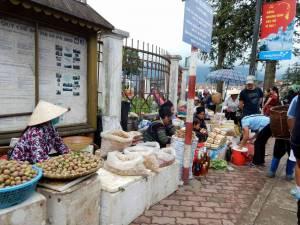 Vietnam | Norden, authentischer Markt für Einheimische in Sa Pa. Verschiedene Damen verkaufen Obst, Honig und andere Produkte