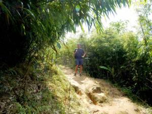 Vietnam | Norden, der Bambuswald auf dem Weg ins Giang Ta Chai Village. Henning steht inmitten der meterhohen Bambuspflanzen