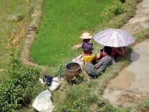 Vietnam | Norden, Familienausflug in die Reisfelder von Sa Pa. Ein Mann mit seiner Frau unter einem Regenschirm zum Sonnenschutz und seinen beiden Kindern sitzend im Reisfeld