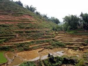 Vietnam | Norden, Panorama auf die Reisterrassen im Muong Hoa Valley. Aufgrund der Jahreszeit stehen die Felder unter Wasser und die Terrassen sind braun von der lehmigen Erde