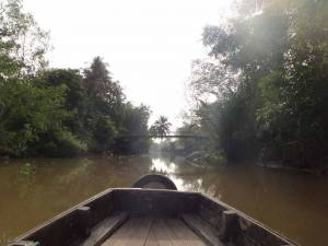 Südvietnam | Can Tho, typische Mekong-Nebenstraße. Blick auf den braunen Fluss gesäumt von Urwald aus einem Holzboot