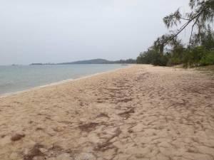 Vietnam | Süden, kilometerlanger noch unberührter Dai Beach im Nordwesten auf Phu Quoc . Panorama auf den Strand, Meer, Dschungel