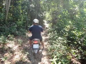 Vietnam | Süden, Moped Tour durch den Urwald. henning sitzt auf dem Moped auf einem schmalen Weg fahrend, der mitten in den Urwald führt