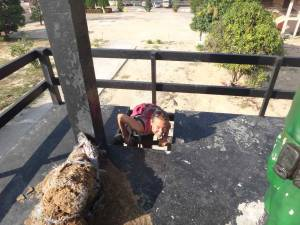Vietnam | Süden, Phu Quoc Prison, Aufstieg zum Überwachungsturm. Karin steigt durch ein kleines Loch auf die Plattform des Turms
