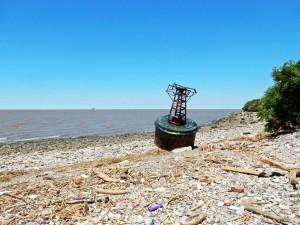 Argentinien | Das Ufer des Rio de la Plata im Naturpark Costanera Sur von Buenos Aires. Ein Horizont wie am Meer