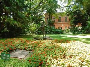 Buenos Aires | Sehenswürdigkeiten: Der idyllische Botanische Garten von Palermo