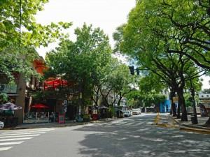 Argentinien | Plaza mit vielen Bäumen im Stadtteil Palermo Viejo von Buenos Aires