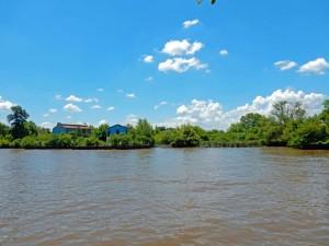 Argentinien | Die grünen Inseln und braunen Kanäle des Tigre Deltas laden zum Entdecken ein