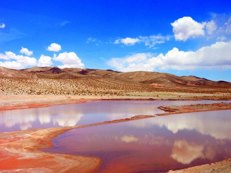 Chile   Spiegelung am Altiplano bei der Überquerung der Grenze mit dem Bus über den Jama Pass von Salta nach San Pedro de Atacama