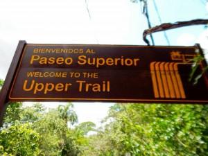 Argentinien | Die Beschilderung im Parque Nacional Iguazu ist sehr gut und mehrsprachig
