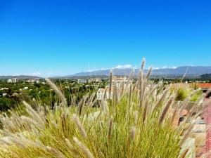Argentinien | Blick auf die Anden und die Weinregion von der Dachterrasse des Rathauses, Terraza Mirador