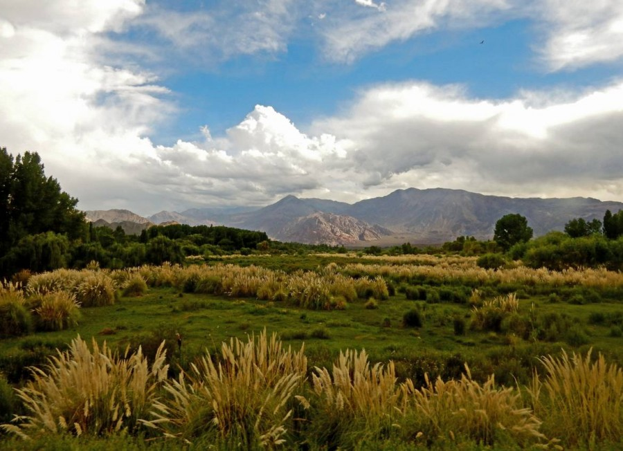 Argentinien | Das umwerfend schöne Umland, die Weinregion von Mendoza ist eine grüne Oase inmitten des trockenen Andenvorlandes
