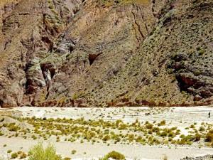 Argentinien   Ein Schäfer mit deiner Herne bei der Überquerung des Altos de Morado Pass in Richtung Salinas Grandes. Eine Herde Schafe hinter ihrem Hirten umgeben von bunten Bergketten