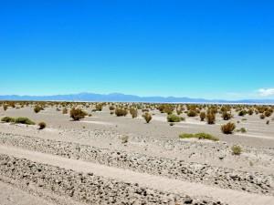 Argentinien | Strecke nach Grandes San Antonio de los Cobres. Flache graue Ebene vor blauem Himmel