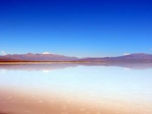 Argentinien | Spiegelung von schneebedeckten Bergen in der Saltwüste Salinas Grandes