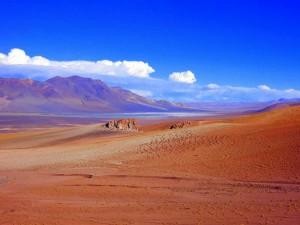 Chile | Altiplano auf dem Weg nach San Pedro de Atacama