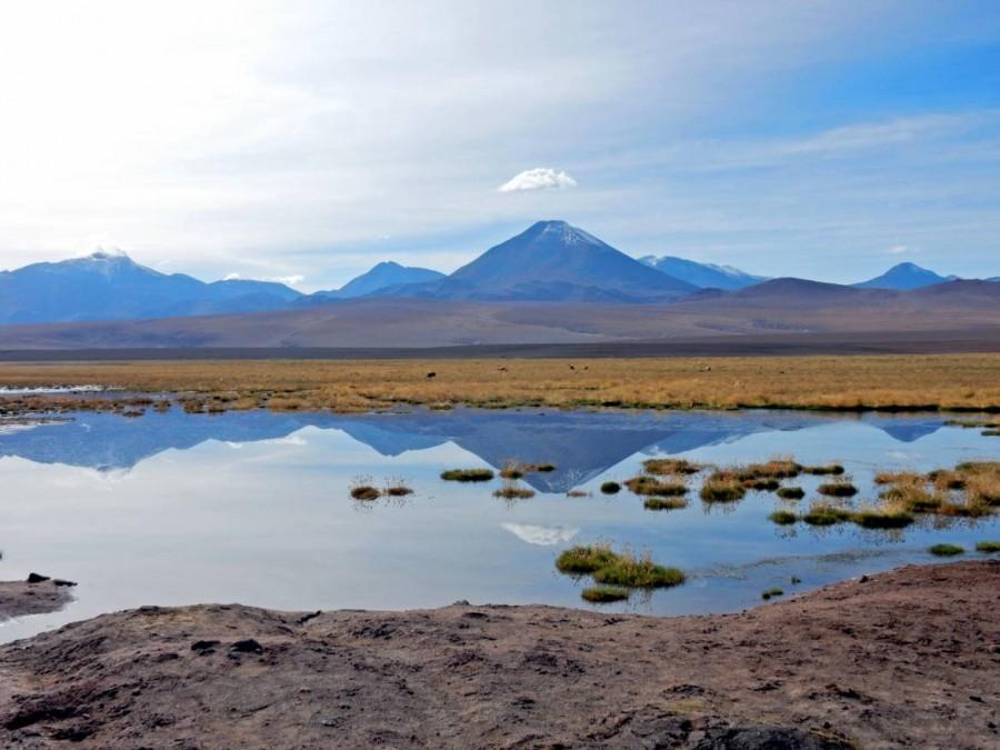 Chile | Atacama Wüste Tour, Vulkanlandschaft, die sich im Putana Fluß spiegelt im Gebiet der Tatio Geysire