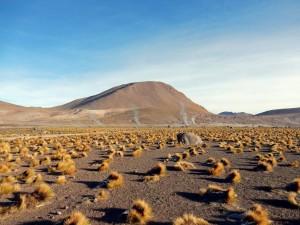 Chile | Atacama-Wüste, Das Dampfen der Tatio Geysire ist nicht mehr sichtbar, sobald die Sonnen scheint
