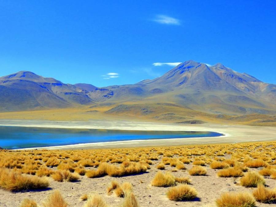 Atacama Wüste| Sehenswürdigkeiten & interessante Orte: Laguna Miscanti. Blick auf den See mit Vulkanen im Hintergrund