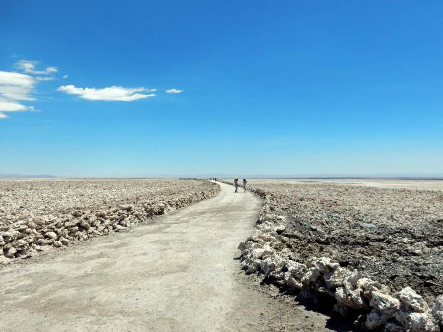 Chile | Atacama Wüste, Weg durch die Chaxa Lagune, Lagunas Chaxas in der Salar de Atacama