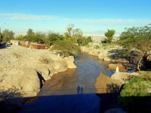 Chile | Atacama-Wüste, Quebrada de Jerez bei Toconao. Fluss mitten in der Wüste
