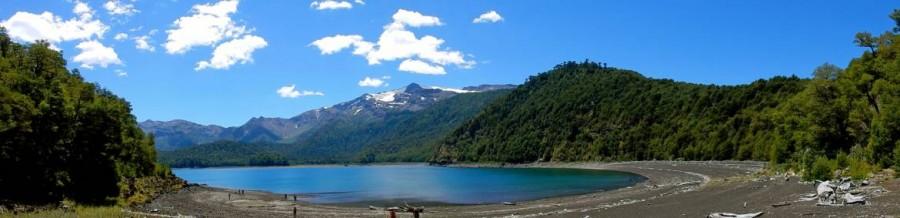 Chile | Temuco, Panorama auf die Laguna Conguillio im Conguillio National Park umgeben von dichtem grünen Wald
