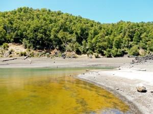 Chile | Temuco, Die Laguna Verde im Conguillio National Park wird ihrem Namen gerecht. Nahaufnahme des grünlich aussehenden Wassers