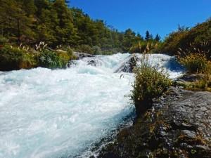 Chile | Temuco, Strömung des Truful Truful Wasserfall in der Nähe des Conguillio National Park . Blick auf den reißenden Fluss umgeben von grünen Bäumen und Gräsern