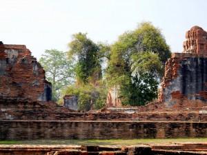 Thailand | Mauer eines Wats in Ayutthaya. Die Stadt hat jede Menge Sehenswürdigkeiten zu bieten