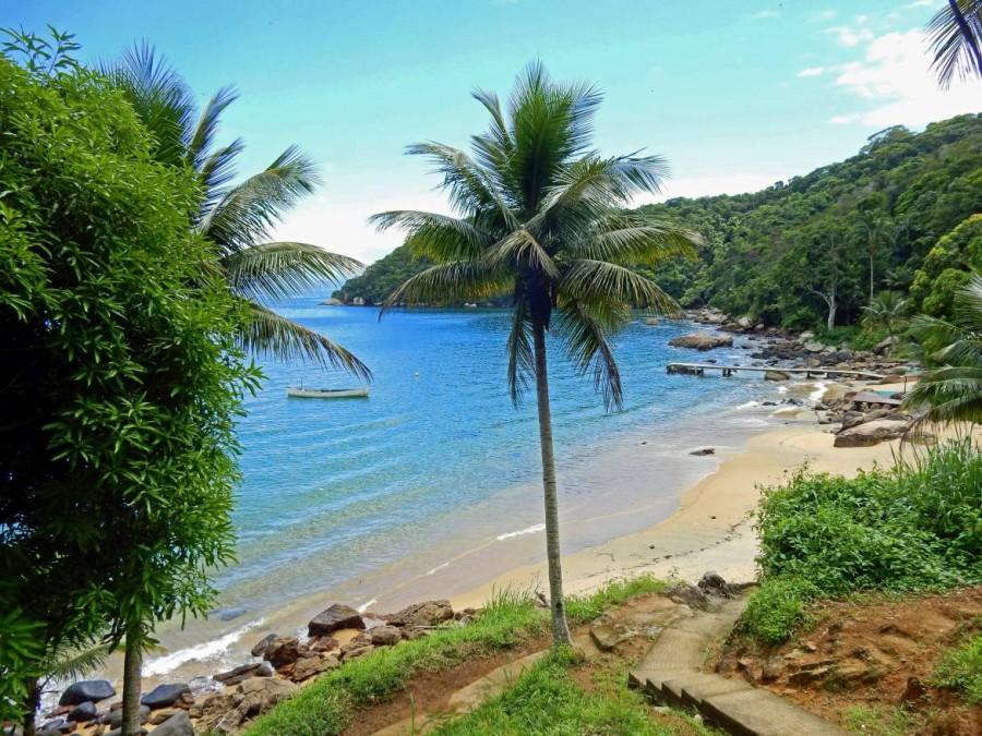 Brasilien | Ilha Grande, Eine der zahlreichen einsamen Buchten der Insel mit Palmen und azurblauem Meerwasser