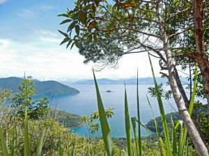 Brasilien | Ilha Grande, Blick von einem der zahlreichen Trails auf die große Insel mit zahlreichen azurblauen Buchten und immergrünen Regenwäldern