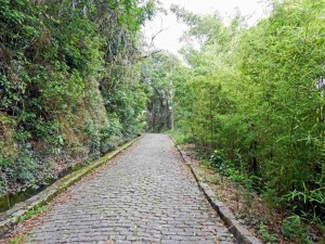 Brasilien | Rio de Janeiro, Der entspannte Kopfsteinplaster-Fußweg durch den Urwald auf das Forte Duque de Caxias