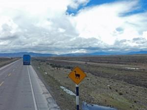 Peru | Vicuna Zone. Blick auf ein gelbes Hinweisschild mit einem schwarzen Vicuna auf dem Weg mit dem Bus von Arequipa nach Cusco
