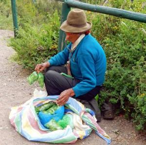 Peru | Sacred Valley, Coca-Opa verkauft Cocablätter gegen Höhenkrankheit. Ein alter Mann sitzt am Boden mit ein paar Tüten mit abgepackten Coca-Blättern vor sich