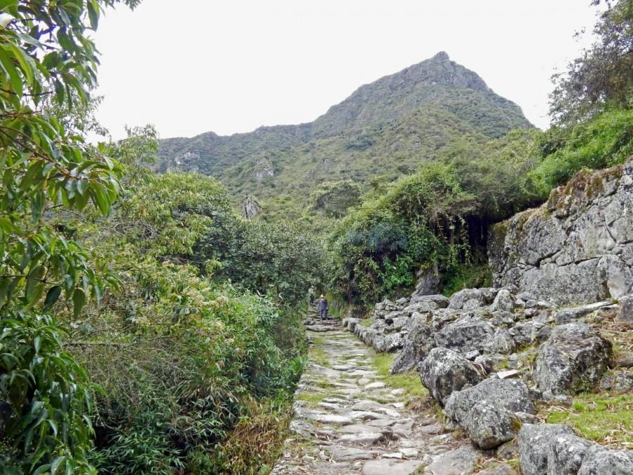 Peru | Machu Picchu, Trail mit Blick auf Machu Picchu Montana