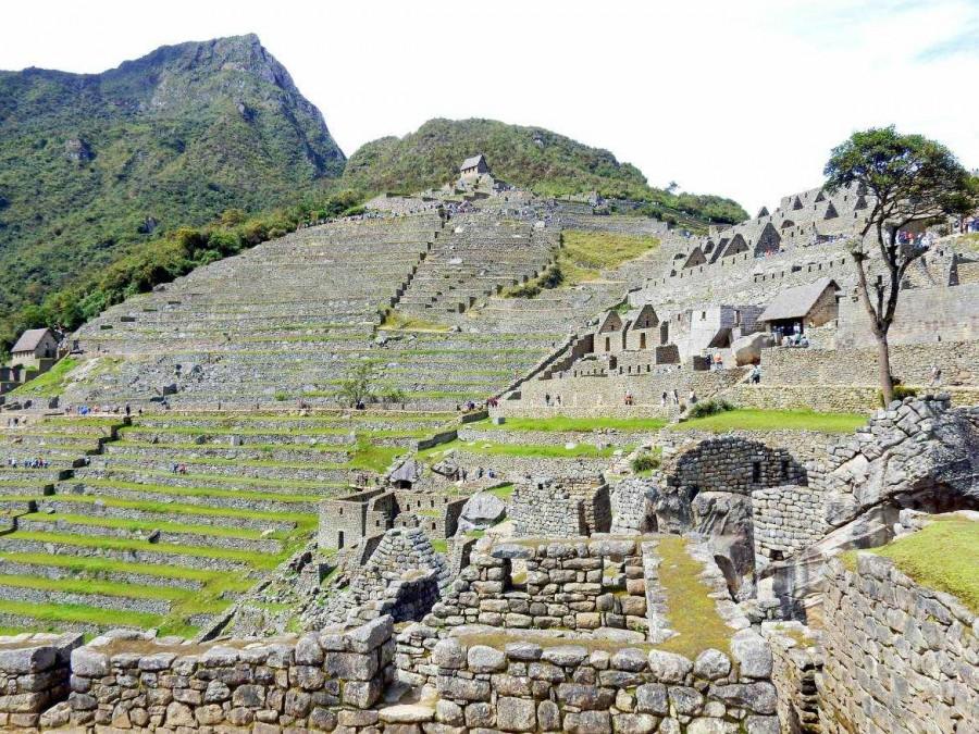 Peru | Machu Picchu, Blick auf Machu Pichhu Montana, Terrassen zur Landwirtschaft und Wohnhäuser der Inka-Stadt