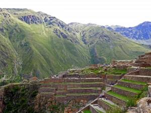 Peru | Machu Picchu, Die Terrassen dienten den Inkas zur Landwirtschaft. Blick auf meterhohe Terrassen und eine Treppe die nach oben führt mit den Bergketten des Urubamba Tal im Hintergrund