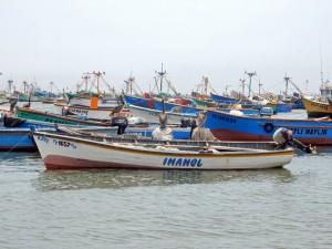 Peru | Paracas, Islas Ballestas Tour, Fischer-Boote. Blick auf zahlreiche bunte Boote auf denen Pelikane sitzen