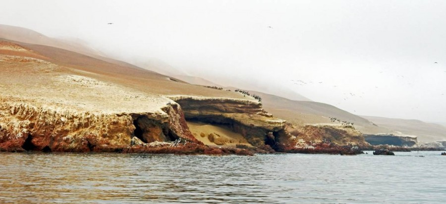 Peru | Paracas, Islas Ballestas Tour, Panorama der Küste bei Nebel am Morgen