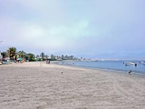 Peru | Der Strand von Paracas- Blick auf den hellen Sandstrand, das Meer und ein paar Palmen im Hintergrund