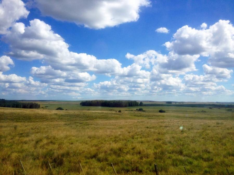 Uruguay | Das grüne Weideland vor herrlicher Wolkenkulisse auf dem Weg mit Bus nach Montevideo