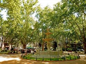 Montevideo | Sehenswürdigkeiten: Der Brunnen am idyllischen Plaza Constitucion unter Bäumen in der Ciudad Vieja